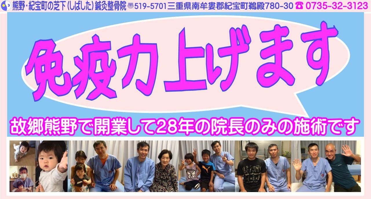 熊野・紀宝町の芝下(しばした)鍼灸整骨院